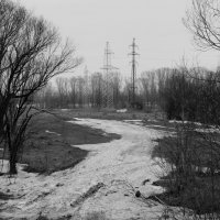 Весна :: Дмитрий Арсеньев