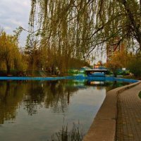 хмурое утро в парке :: Александр Корчемный