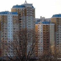 мы построим город :: Олег Лукьянов