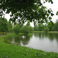 Дождливый май в Царском Селе. :: Лариса (Phinikia) Двойникова