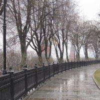 В Кремлевском саду. Апрель :: Маера Урусова