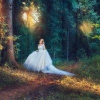 Сказка в лесу :: Александра Семочкина