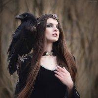 Fayr :: Ludmila Zinovina