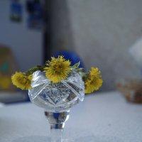 цветы и хрусталь :: Алексей Логинов