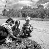 Дети у дороги. :: Victor