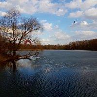 Начало апреля. Приходят дни света и синей прозрачной воды. :: Ольга Русанова (olg-rusanowa2010)