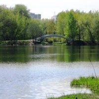 Головинские пруды :: Дмитрий Никитин