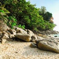 пляж Найтон :: Екатерина Самохина