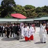 Свадьба в Токио :: Андрей K.