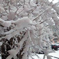 Зима пришла в апреле... :: Sergey Gordoff