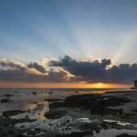 восход на Красном море :: Лариса Батурова