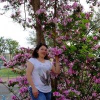 Света и орхидейное дерево :: Александр Деревяшкин