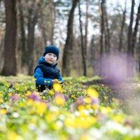 Мой сыночек :: Елена Воронькова