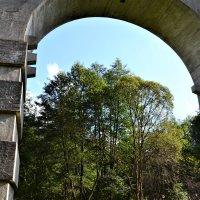 Старый мост :: Марина