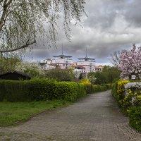Когда цветут сады... :: Valentina M.