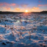 Первоапрельский рассвет...3 :: Андрей Войцехов