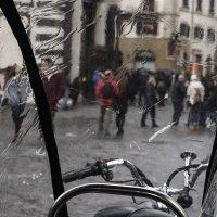 Дождивая Флоренция :: Людмила Синицына