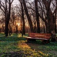 Стоит одиноко... :: Сергей Степанов