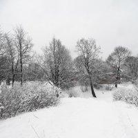 словно зима...но на дворе апрель... :: Михаил Жуковский