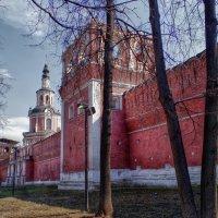Донсклй монастырь :: Наталья Лакомова