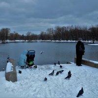 На спуске у Большого пруда... :: Sergey Gordoff