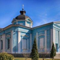 Богородице-Рождественский Бобренев монастырь :: Ирина Александровна