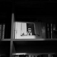 Вечерний свет :: Tanja Gerster