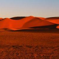 Вечер в Сахаре-3 :: Александр