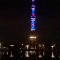 Вечером у Останкинского пруда :: Павел Михалев