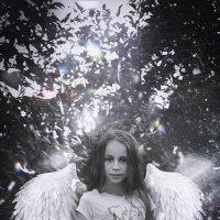 Ангел :: Андрей Дыдыкин