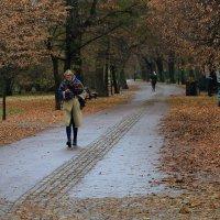 Осенним днем :: Татьяна Панчешная