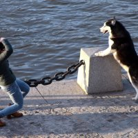 ФотО. :: Владимир однакО...