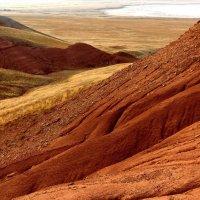 На Марсе :: Dr. Olver  ( ОлегЪ )