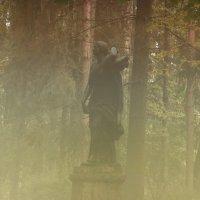 Туманно в парке(дочь Ниобеи)) :: Алексей Цветков