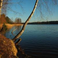 Озеро Молочное :: Сергей ***