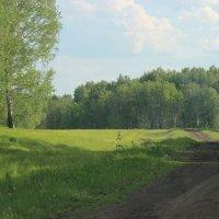 Дальняя дорога к дому :: Александра Бояркина
