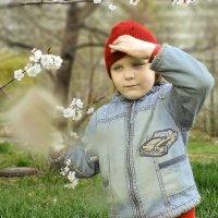 Весна пришла... :: Александр Мартынов