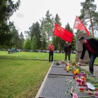 9 мая 2015 :: Oksana Malkina