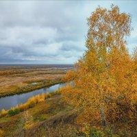 Осенний, пасмурный день... :: Александр Никитинский
