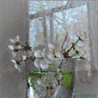 Весна, рассвет, надежда и начало, :: Людмила Богданова (Скачко)