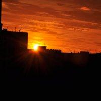 Янтарный закат. Фотограф: Мира Озерская :: Мира Озерская
