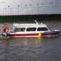 Водный трамвайчик рассекает воды Преголи :: Маргарита Батырева