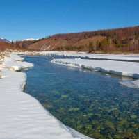 Прозрачные весенние воды :: Анатолий Иргл