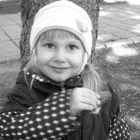Голубоглазик :: Дарья Гаврилова