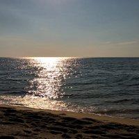 Солнечная дорожка :: Swetlana V