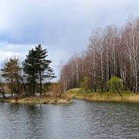 Островок в пруду :: Милешкин Владимир Алексеевич