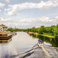 На реке Цне................... :: Александр Селезнев