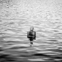 Спина в воде :: Валерий Серегин