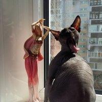 Как только не извернёшься, чтоб предстать перед дамой  во всём блеске!:))) :: nika555nika Ирина