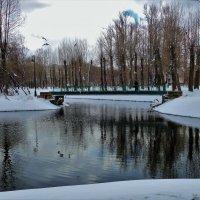 Чайки над мостиком... :: Sergey Gordoff
